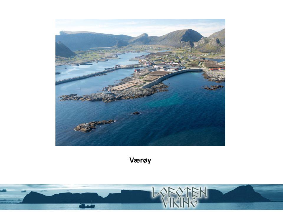 Lofoten Viking AS Lofoten Viking as er en datterbedrift i Nord Norges største fiskerikonsern Nergård AS Produksjon og omsetning Pelagisk og hvitfisk Eksportmarkedet