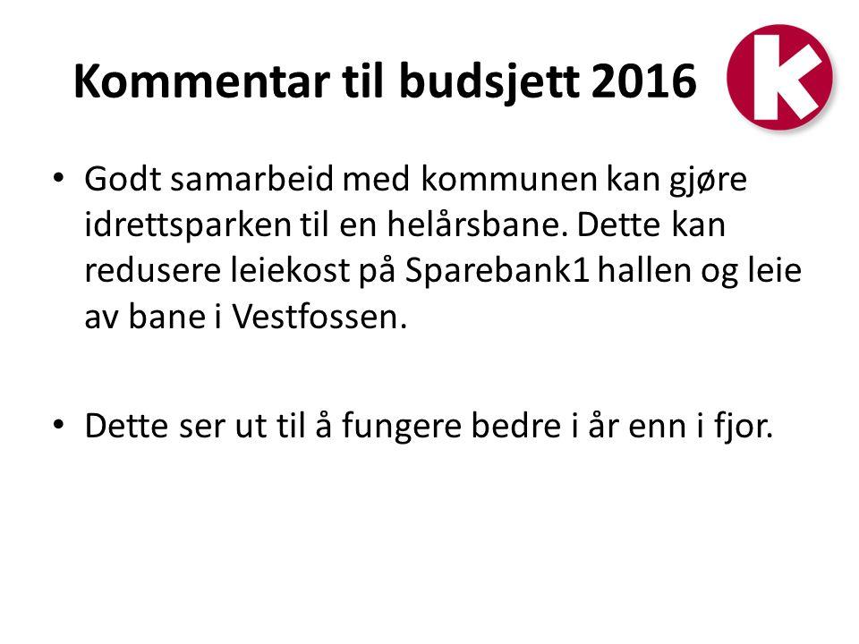 Kommentar til budsjett 2016 Godt samarbeid med kommunen kan gjøre idrettsparken til en helårsbane.