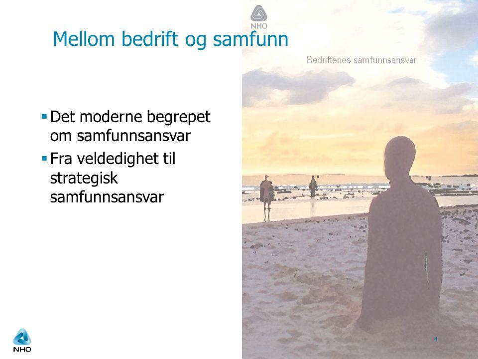  Det moderne begrepet om samfunnsansvar  Fra veldedighet til strategisk samfunnsansvar 4 Mellom bedrift og samfunn