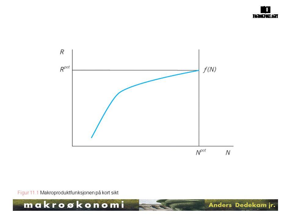 Figur 11.1 Makroproduktfunksjonen på kort sikt