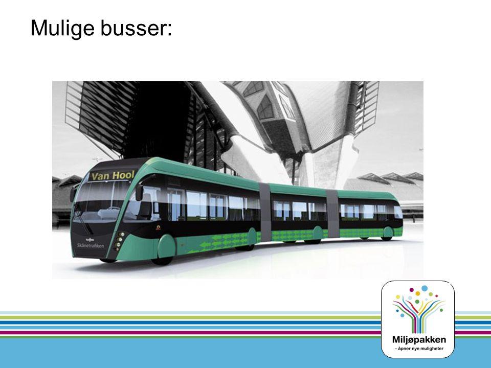 Mulige busser: