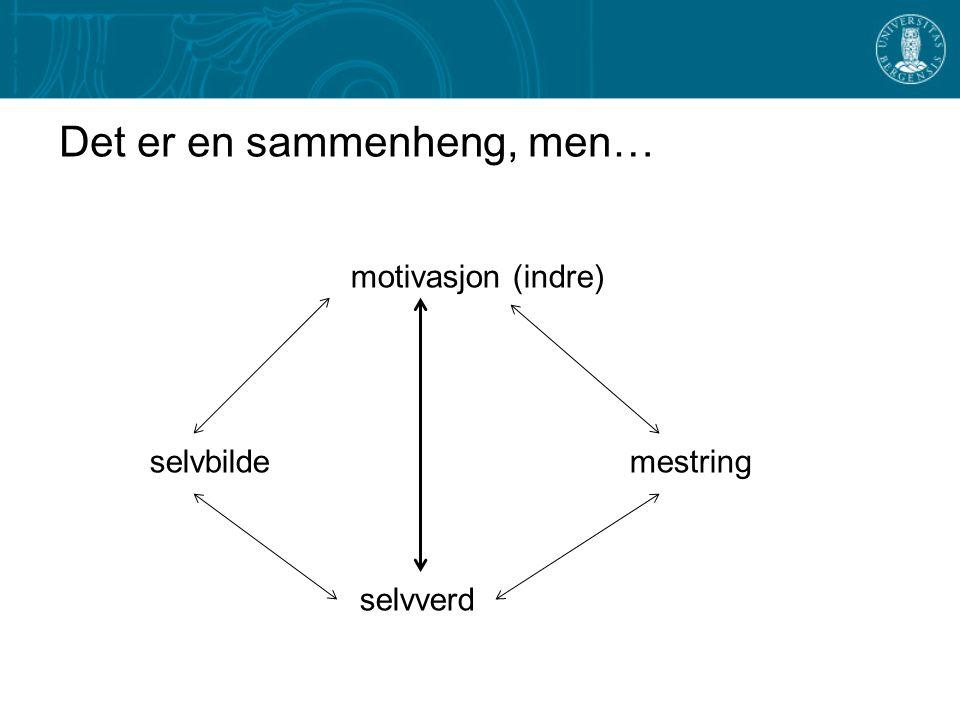 Det er en sammenheng, men… motivasjon (indre) selvbildemestring selvverd