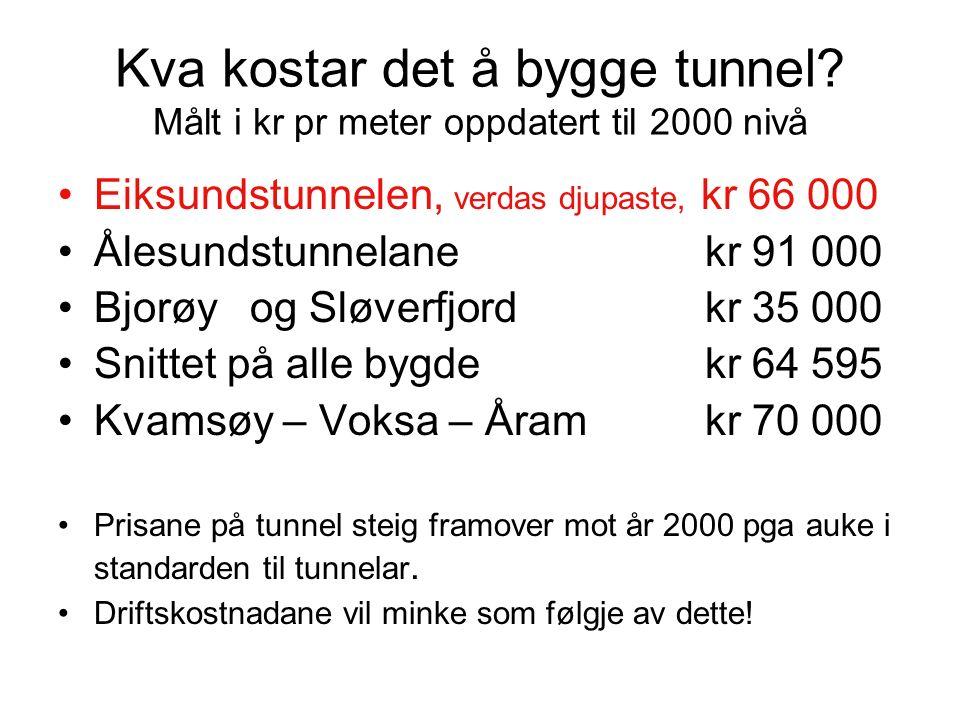 Kva kostar det å bygge tunnel.