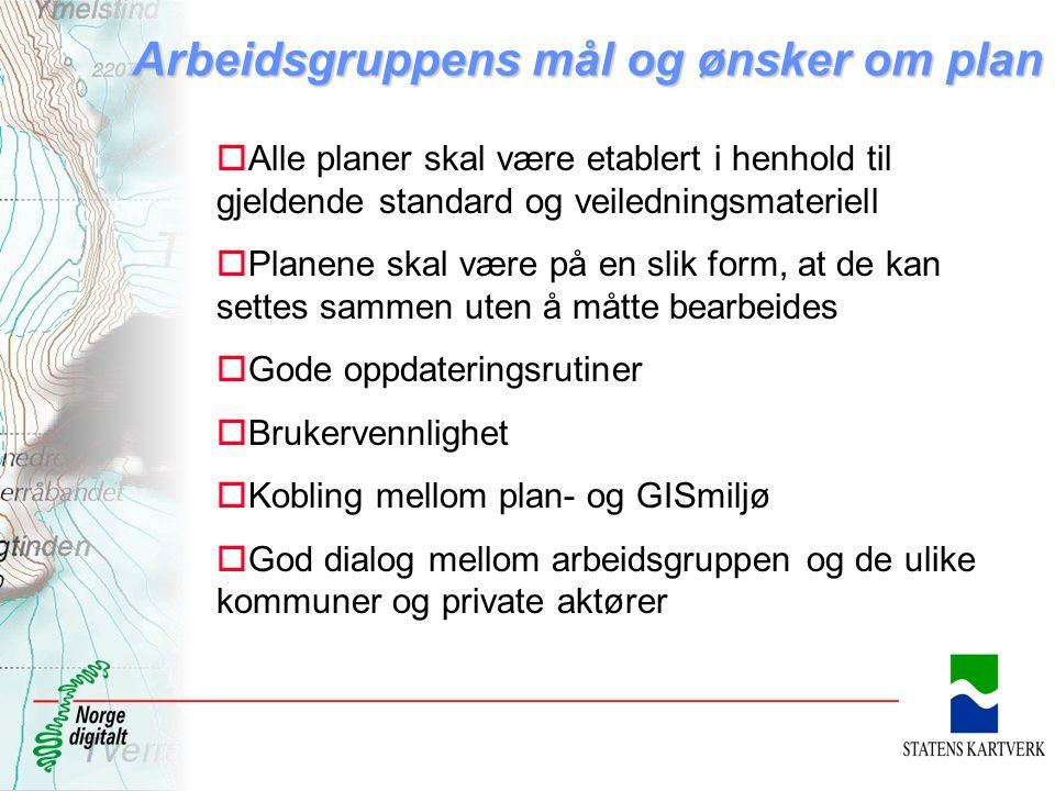 Arbeidsgruppens mål og ønsker om plan oAlle planer skal være etablert i henhold til gjeldende standard og veiledningsmateriell oPlanene skal være på e