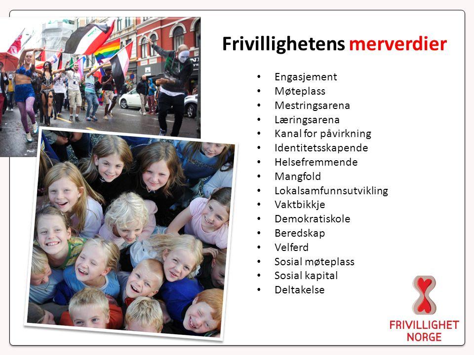 De ti frivillighetspolitiske bud 7.