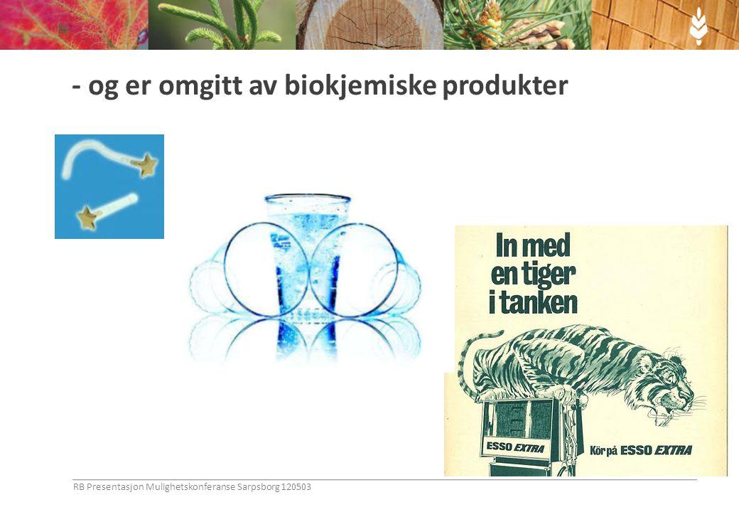 - og er omgitt av biokjemiske produkter RB Presentasjon Mulighetskonferanse Sarpsborg 120503