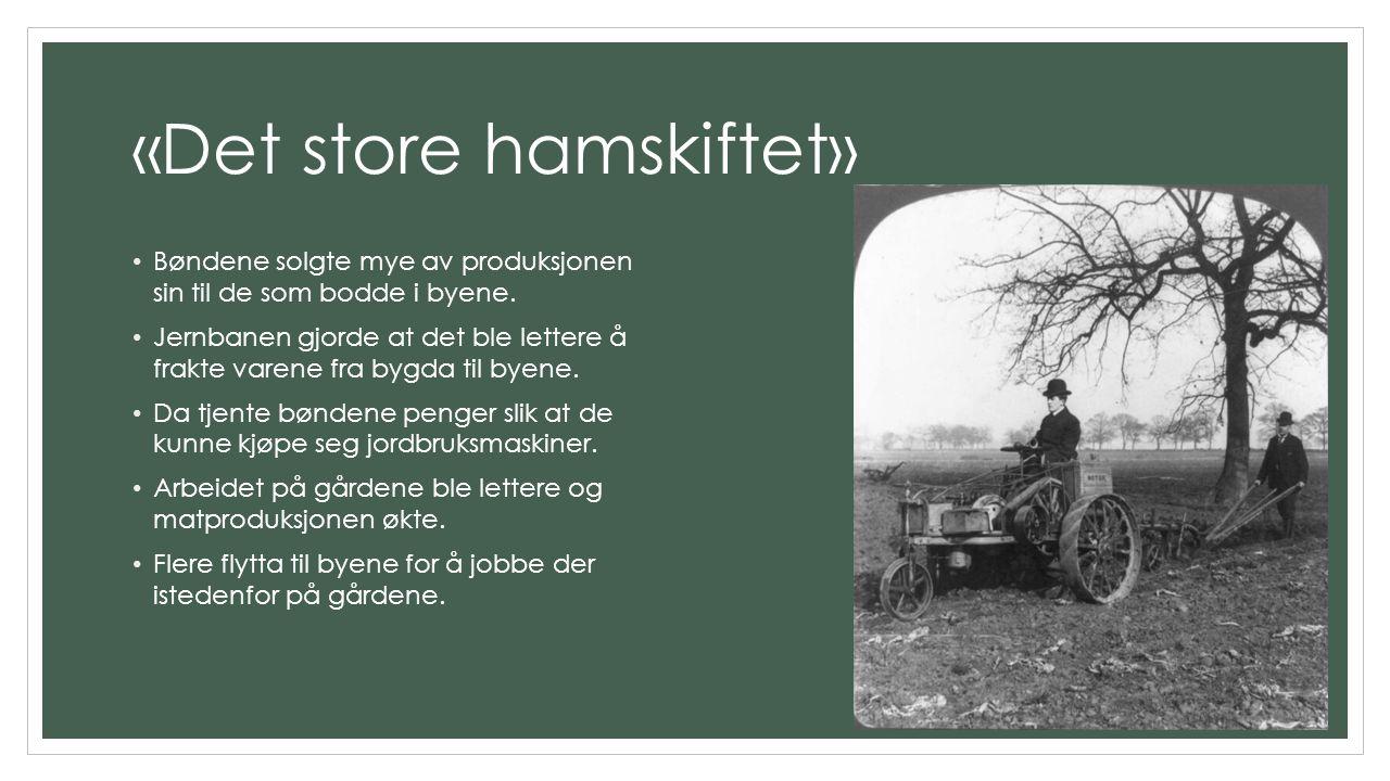«Det store hamskiftet» Bøndene solgte mye av produksjonen sin til de som bodde i byene. Jernbanen gjorde at det ble lettere å frakte varene fra bygda