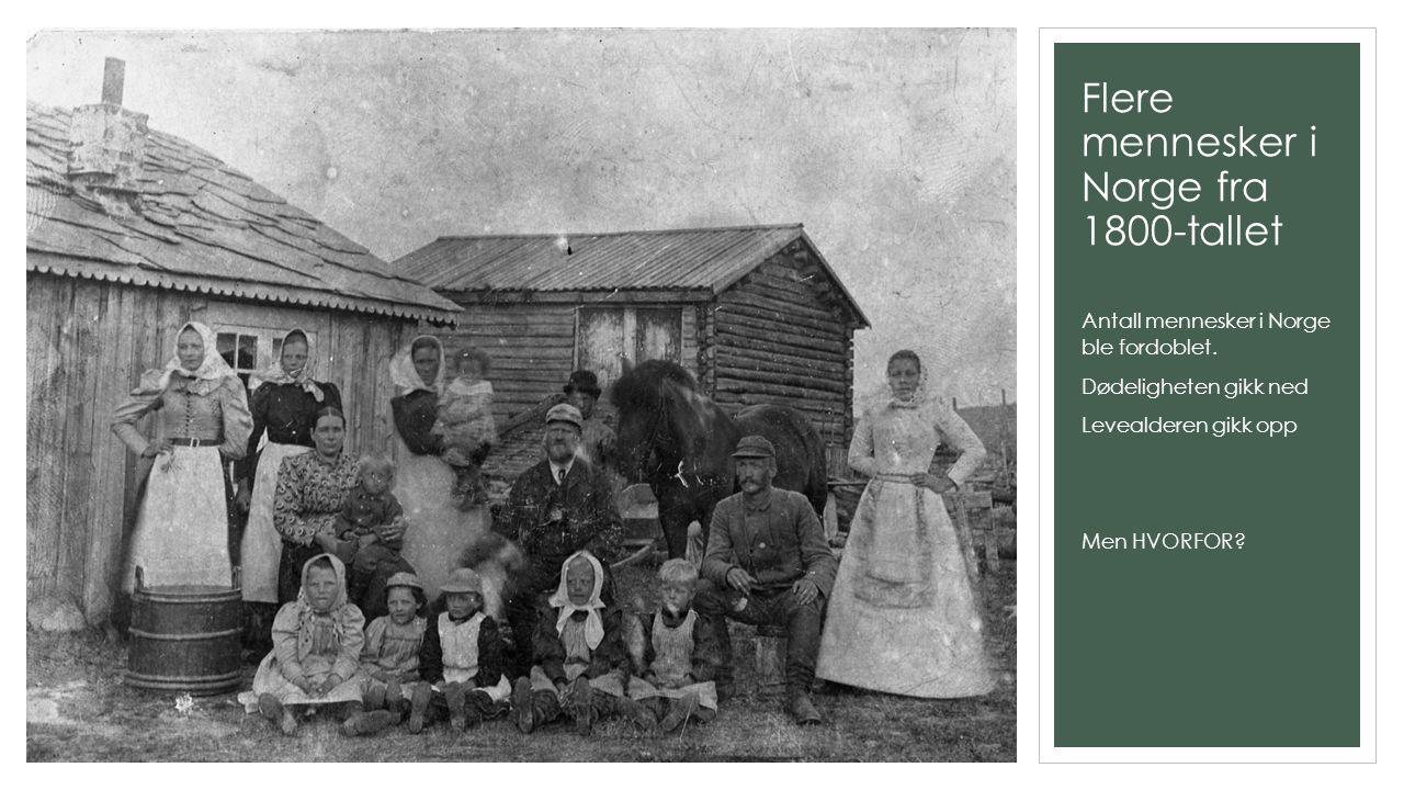 Flere mennesker i Norge fra 1800-tallet Antall mennesker i Norge ble fordoblet. Dødeligheten gikk ned Levealderen gikk opp Men HVORFOR?