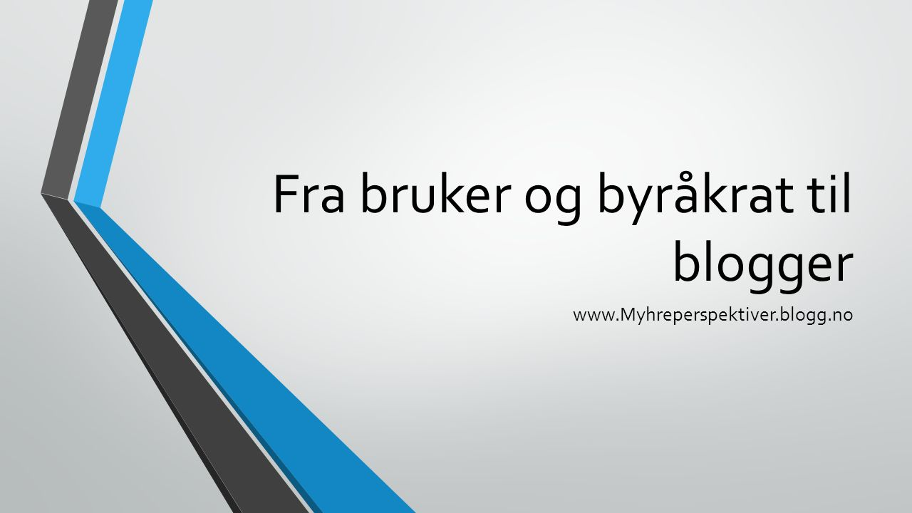 Fra bruker og byråkrat til blogger www.Myhreperspektiver.blogg.no