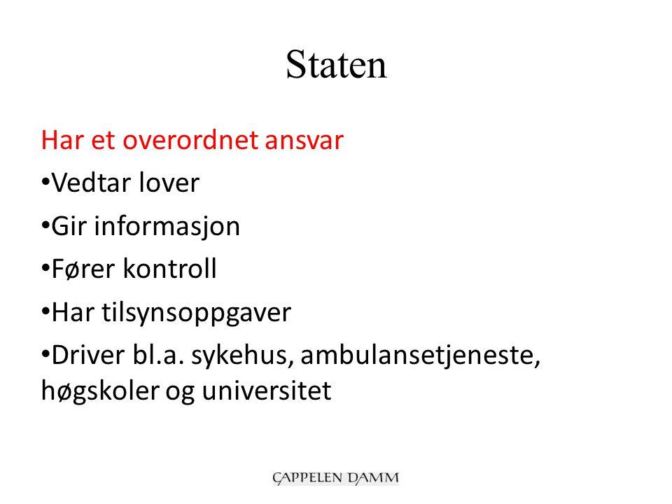 Staten Har et overordnet ansvar Vedtar lover Gir informasjon Fører kontroll Har tilsynsoppgaver Driver bl.a.