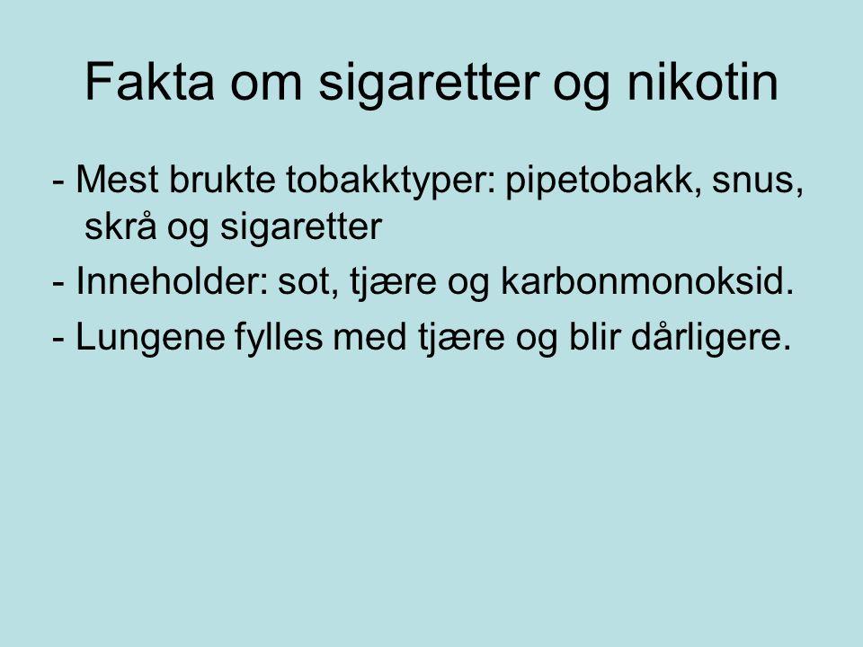 Fakta om sigaretter og nikotin - Mest brukte tobakktyper: pipetobakk, snus, skrå og sigaretter - Inneholder: sot, tjære og karbonmonoksid.