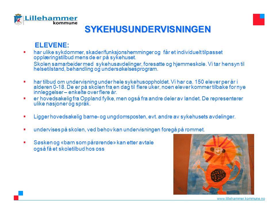 www.lillehammer.kommune.no ELEVENE:  har ulike sykdommer, skader/funksjonshemminger og får et individuelt tilpasset opplæringstilbud mens de er på sykehuset.