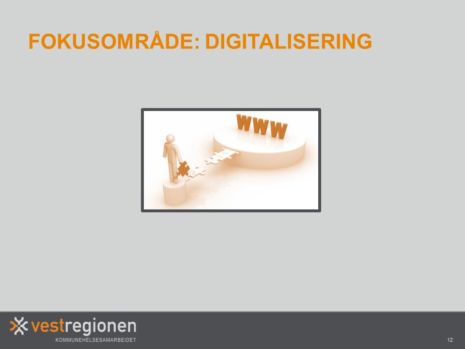 12 FOKUSOMRÅDE: DIGITALISERING