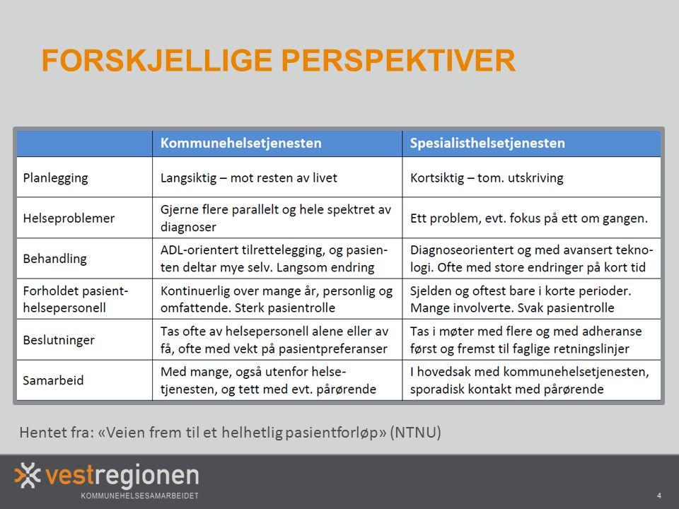 4 FORSKJELLIGE PERSPEKTIVER Hentet fra: «Veien frem til et helhetlig pasientforløp» (NTNU)