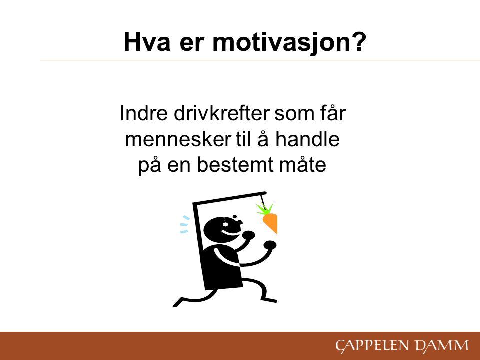 Hva er motivasjon? Indre drivkrefter som får mennesker til å handle på en bestemt måte
