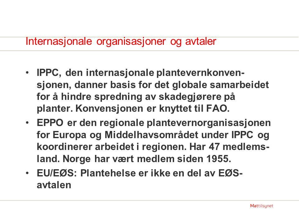 ISPM 15 Guidelines for regulating wood packaging material in international trade.