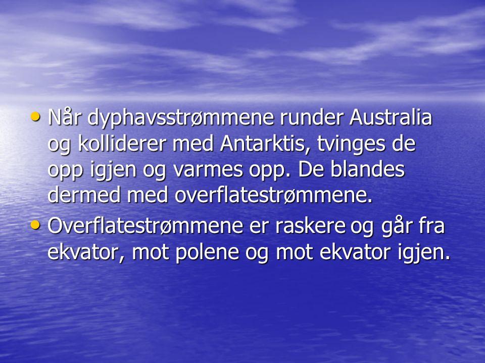 Når dyphavsstrømmene runder Australia og kolliderer med Antarktis, tvinges de opp igjen og varmes opp. De blandes dermed med overflatestrømmene. Når d