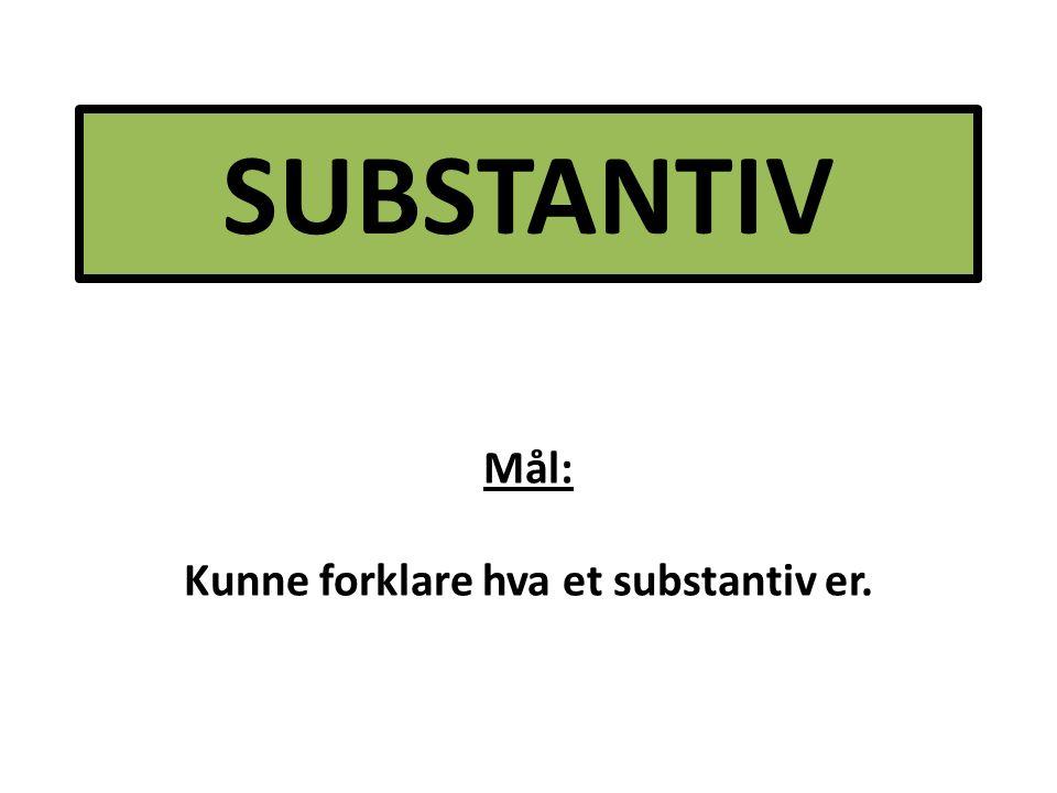 SUBSTANTIV Mål: Kunne forklare hva et substantiv er.