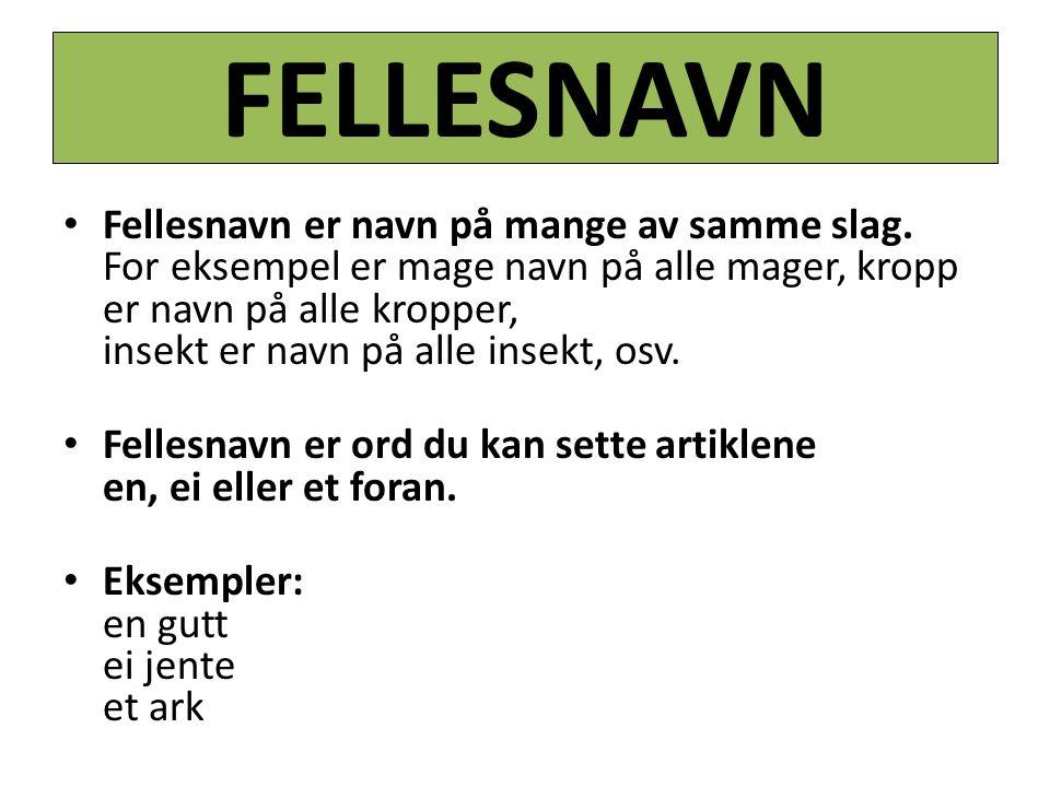 FELLESNAVN Fellesnavn er navn på mange av samme slag.