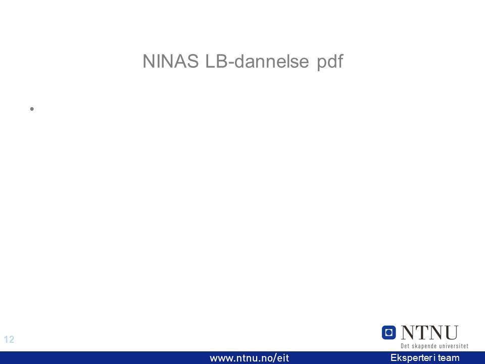 12 EiT 2006/2007 Eksperter i team NINAS LB-dannelse pdf