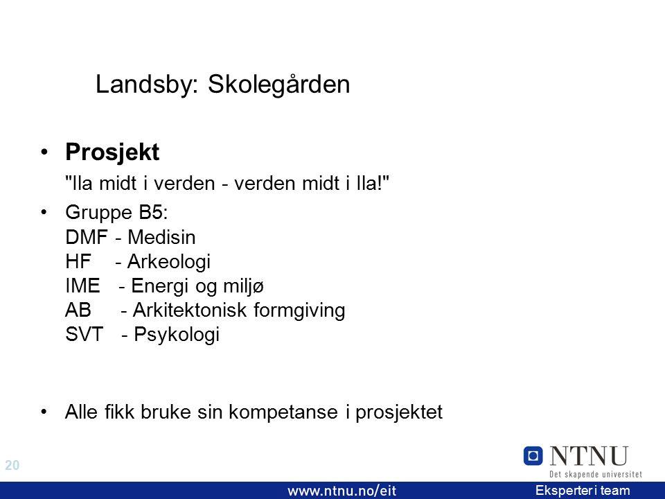 20 EiT 2006/2007 Eksperter i team Landsby: Skolegården Prosjekt