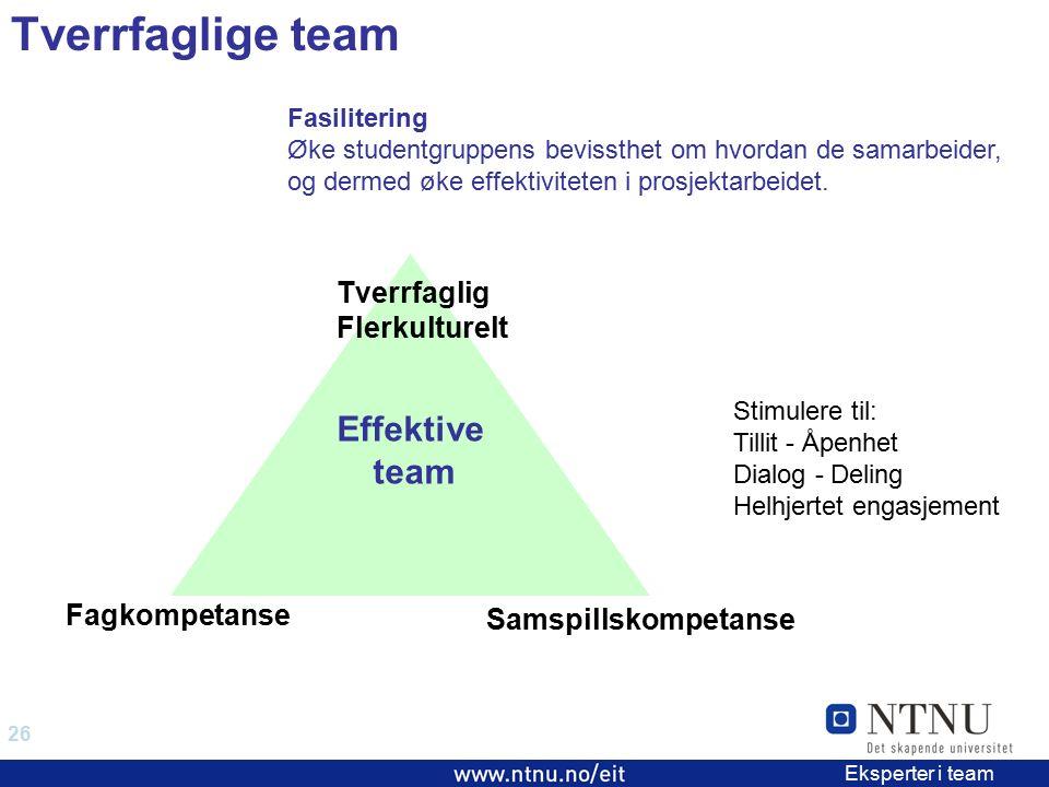 26 EiT 2006/2007 Eksperter i team Fagkompetanse Samspillskompetanse Tverrfaglig Flerkulturelt Effektive team Tverrfaglige team Fasilitering Øke studentgruppens bevissthet om hvordan de samarbeider, og dermed øke effektiviteten i prosjektarbeidet.