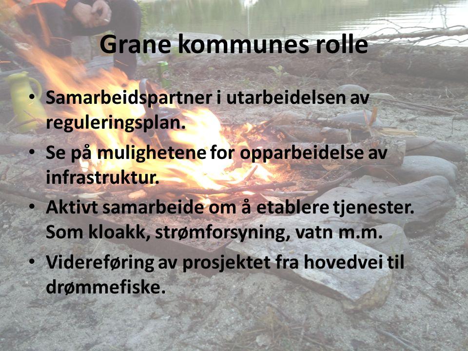 Grane kommunes rolle Samarbeidspartner i utarbeidelsen av reguleringsplan.