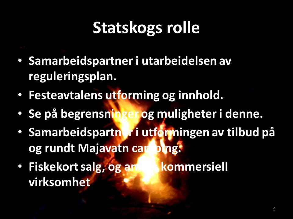 Statskogs rolle Samarbeidspartner i utarbeidelsen av reguleringsplan.