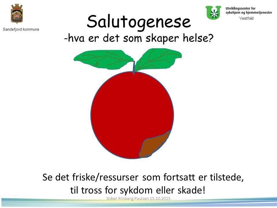 Salutogenese -hva er det som skaper helse.