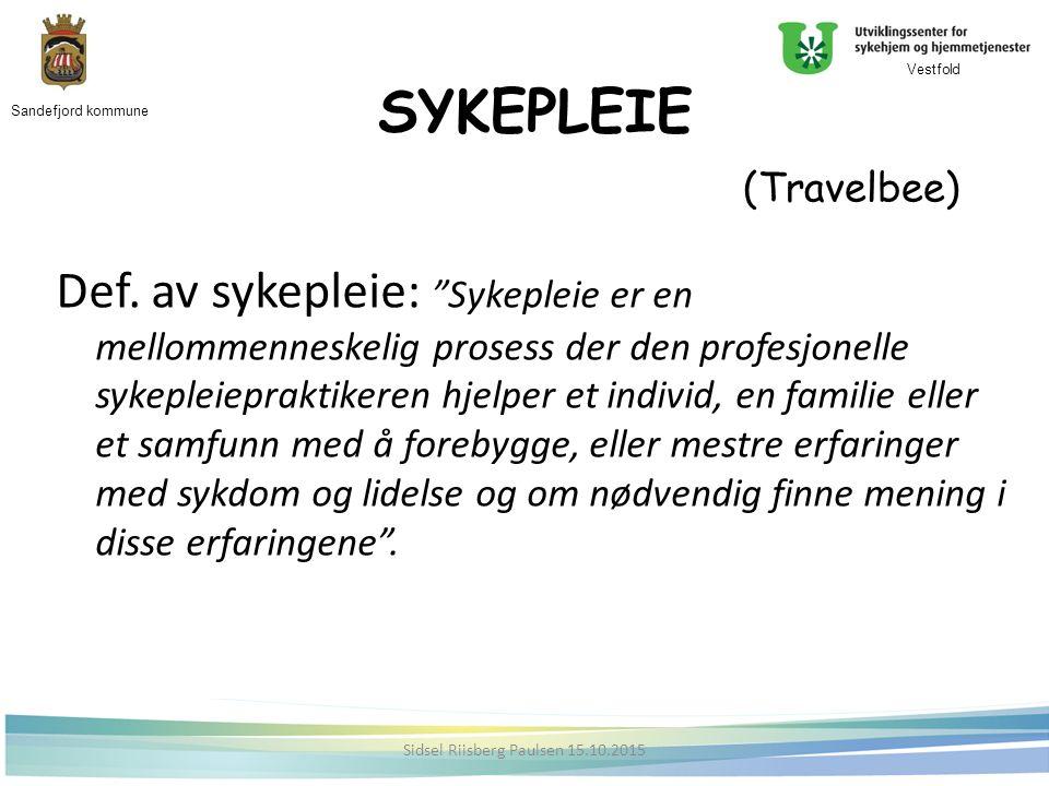 SYKEPLEIE (Travelbee) Def.
