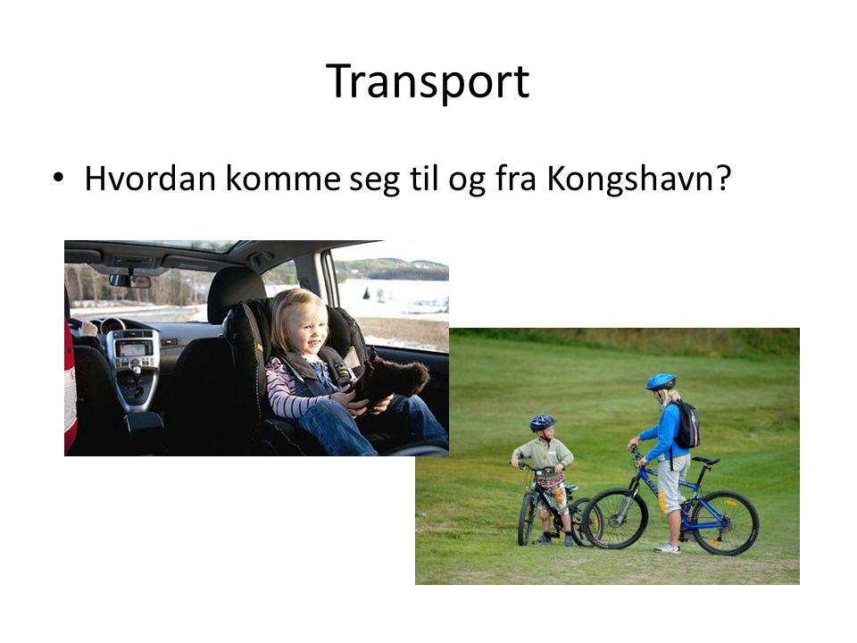 Transport Hvordan komme seg til og fra Kongshavn