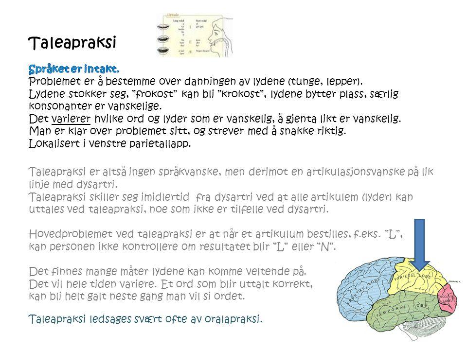 Taleapraksi Taleapraksi er altså ingen språkvanske, men derimot en artikulasjonsvanske på lik linje med dysartri. Taleapraksi skiller seg imidlertid f