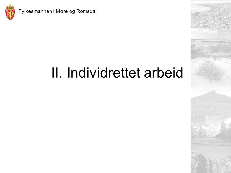 Fylkesmannen i Møre og Romsdal II. Individrettet arbeid