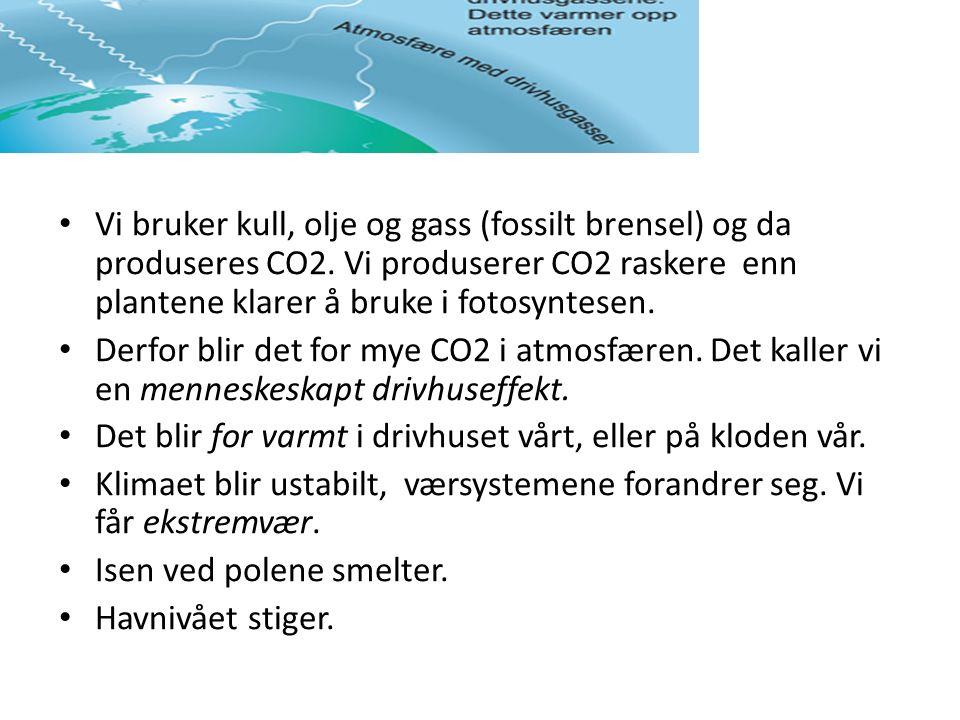 Vi bruker kull, olje og gass (fossilt brensel) og da produseres CO2.