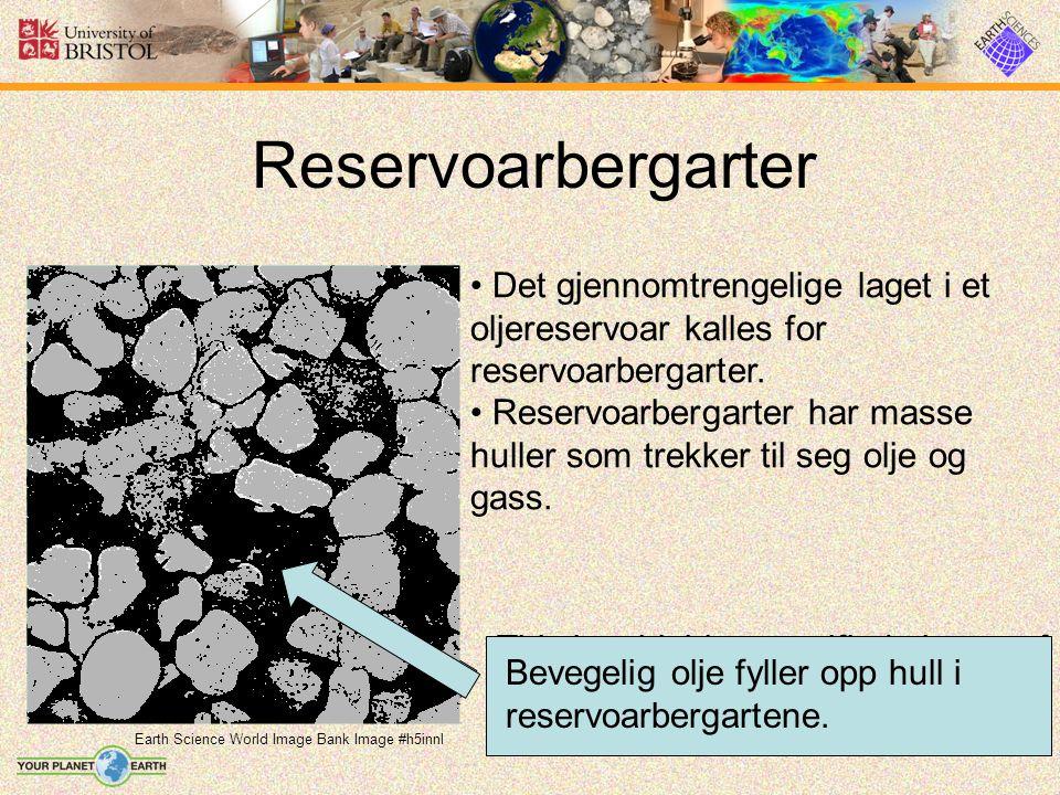 Reservoarbergarter Earth Science World Image Bank Image #h5innl Det gjennomtrengelige laget i et oljereservoar kalles for reservoarbergarter.