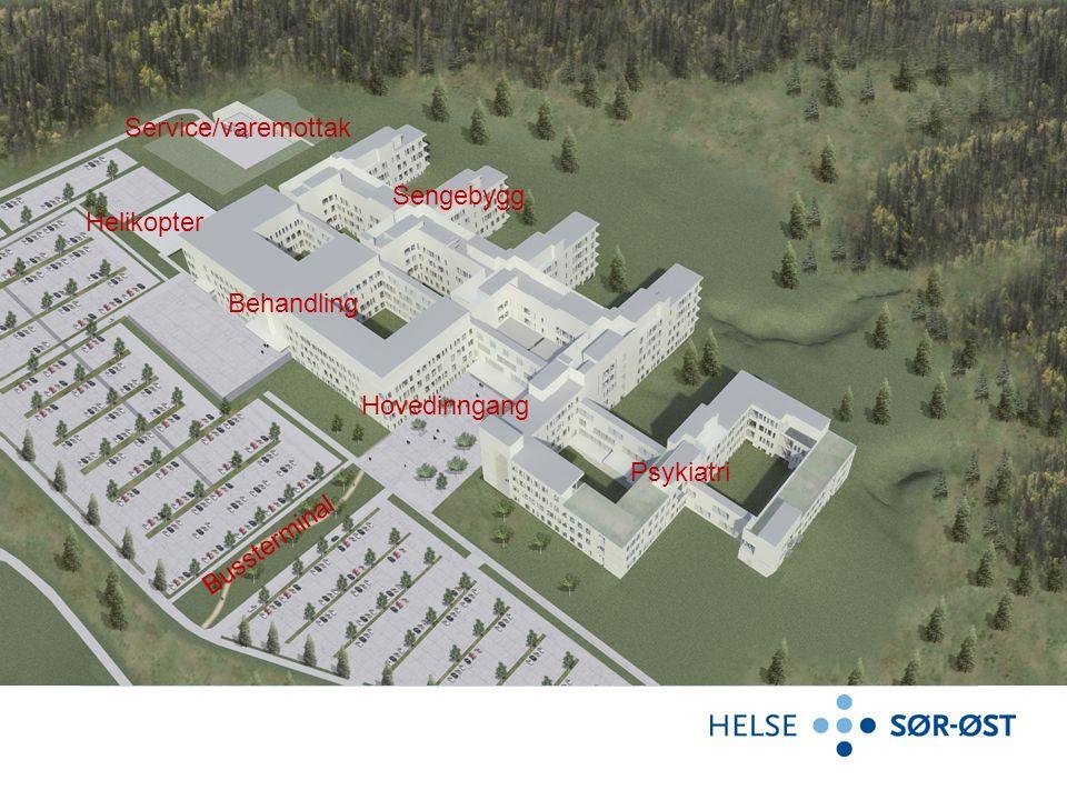 Kapasitet 2020 Sykehuset Østfold MossKalnesForprosjekt Senger678 Ordinær somatikk 100 416516 Ordinær psykiatri108 Tekniske somatikk43 Teknisk psykiatr