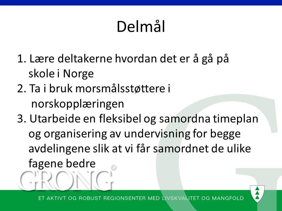 Delmål 1. Lære deltakerne hvordan det er å gå på skole i Norge 2. Ta i bruk morsmålsstøttere i norskopplæringen 3. Utarbeide en fleksibel og samordna