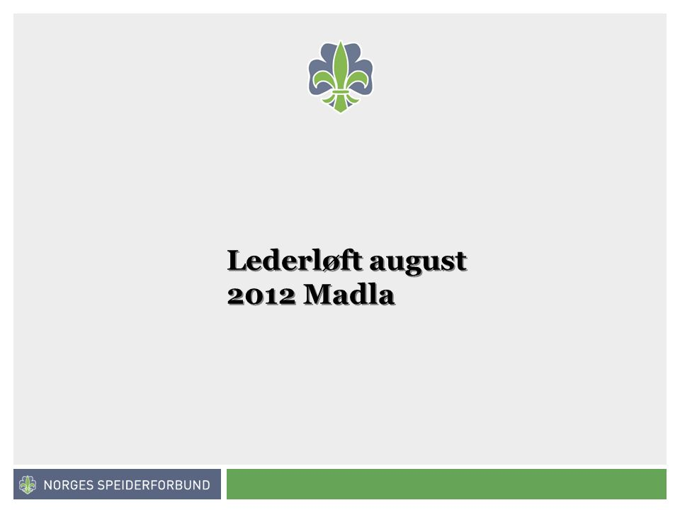 Norges speiderforbund Lederløft august 2012 Madla