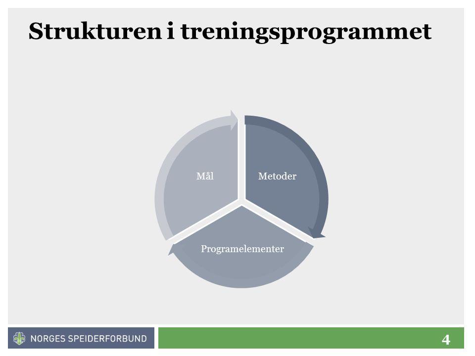 4 Strukturen i treningsprogrammet Metoder Programelementer Mål