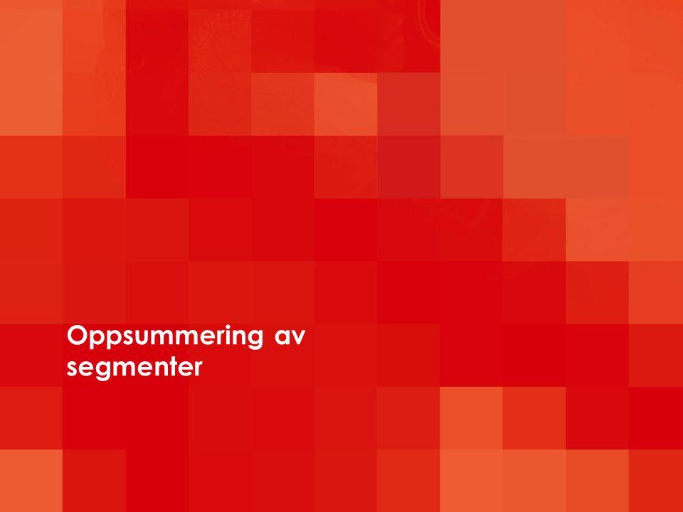 Oppsummering av segmenter