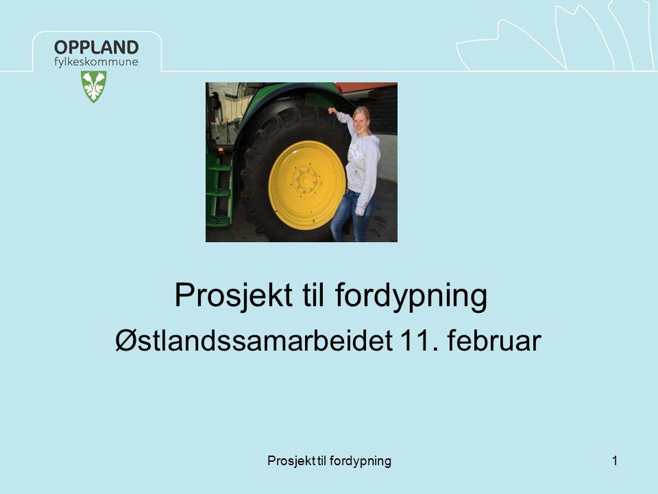 Prosjekt til fordypning Østlandssamarbeidet 11. februar 1Prosjekt til fordypning
