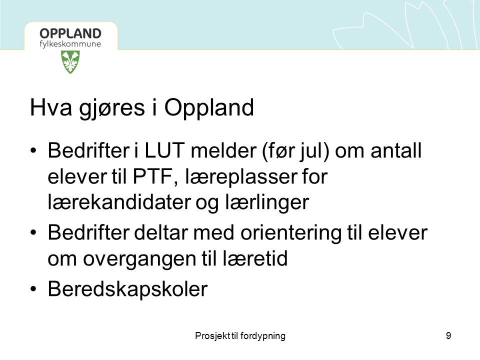 Hva gjøres i Oppland Bedrifter i LUT melder (før jul) om antall elever til PTF, læreplasser for lærekandidater og lærlinger Bedrifter deltar med orien