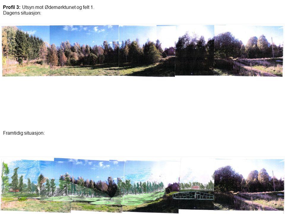 forum for natur og friluftsliv i Vestby Profil 3: Utsyn mot Ødemørktunet og felt 1. Dagens situasjon: Framtidig situasjon: