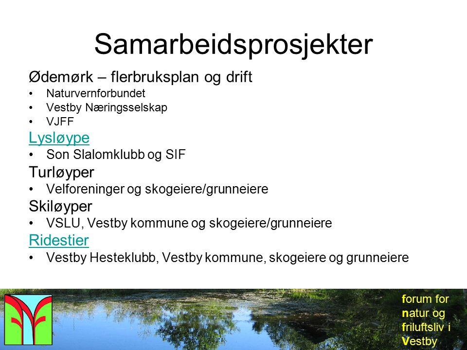 forum for natur og friluftsliv i Vestby Samarbeidsprosjekter Ødemørk – flerbruksplan og drift Naturvernforbundet Vestby Næringsselskap VJFF Lysløype S