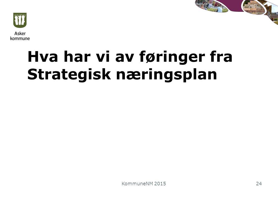 Hva har vi av føringer fra Strategisk næringsplan KommuneNM 201524
