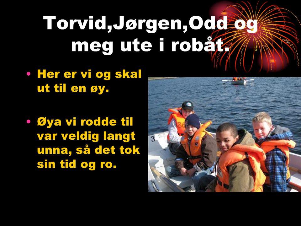 Torvid,Jørgen,Odd og meg ute i robåt. Her er vi og skal ut til en øy. Øya vi rodde til var veldig langt unna, så det tok sin tid og ro.