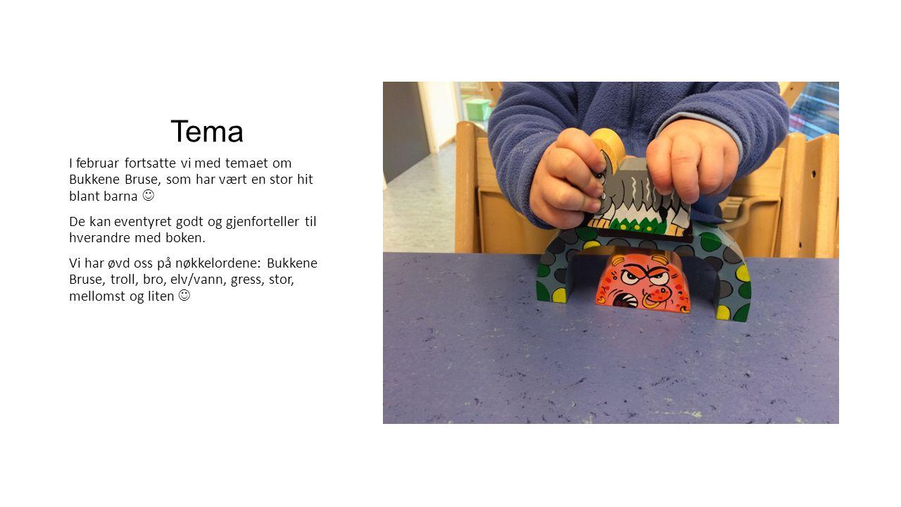 Tema I februar fortsatte vi med temaet om Bukkene Bruse, som har vært en stor hit blant barna De kan eventyret godt og gjenforteller til hverandre med boken.