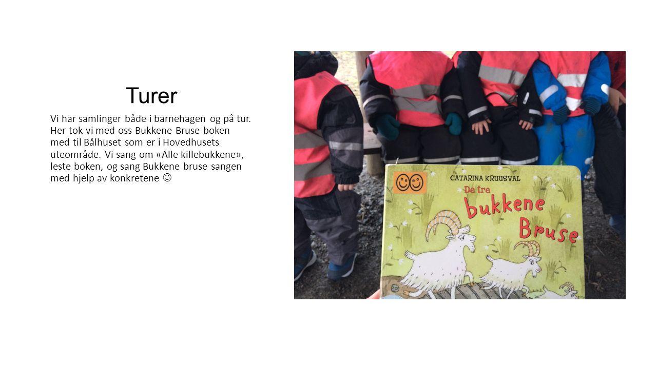 Turer Vi har samlinger både i barnehagen og på tur. Her tok vi med oss Bukkene Bruse boken med til Bålhuset som er i Hovedhusets uteområde. Vi sang om