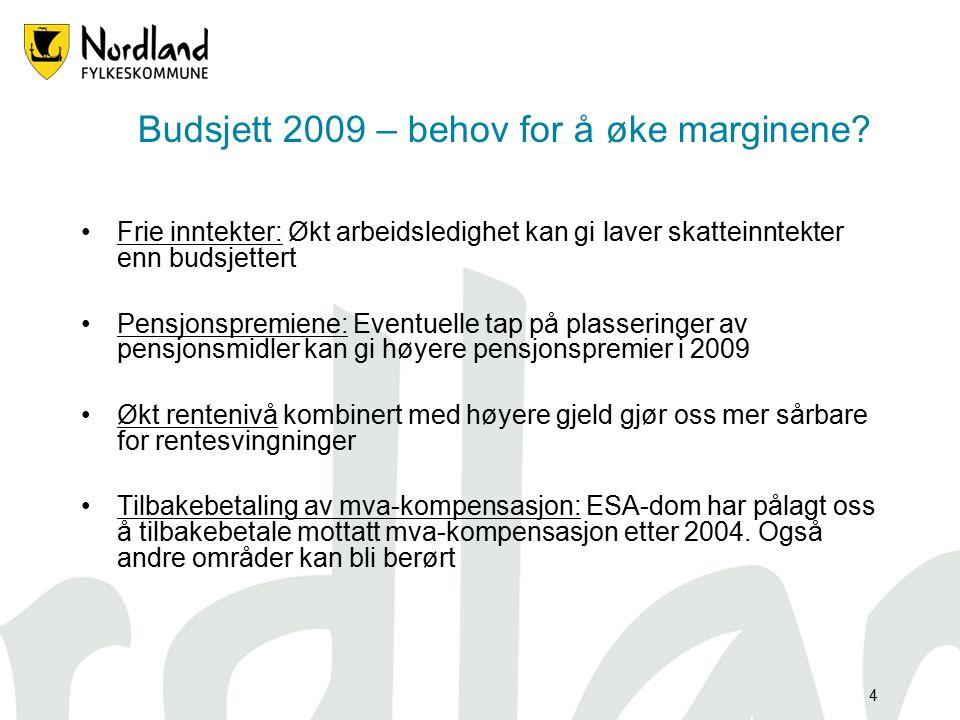 4 Budsjett 2009 – behov for å øke marginene.