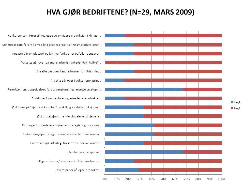 HVA GJØR BEDRIFTENE (N=29, MARS 2009)